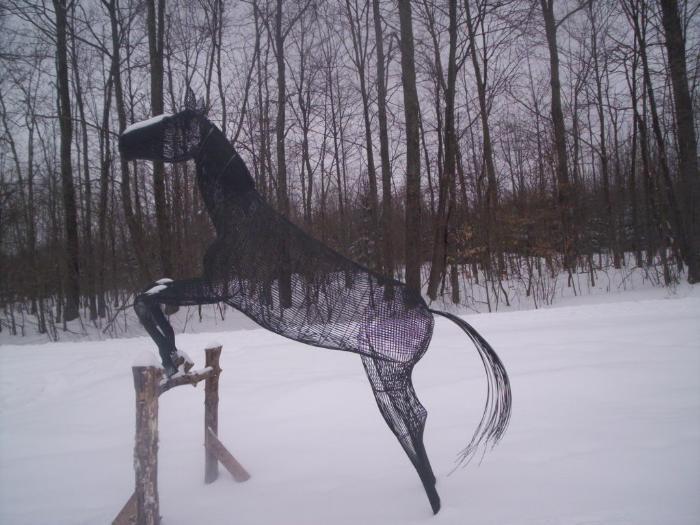 Лошадки приколы своими руками